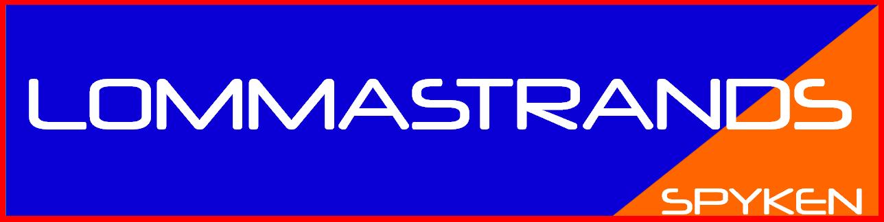 Spykens Trafikskola Logo